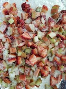 Rhubarb and Strawberries before being roasted