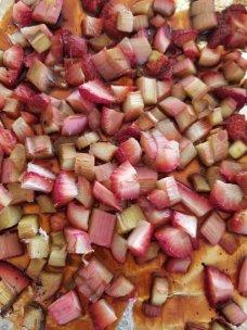 Roasted Rhubarb and Strawberries