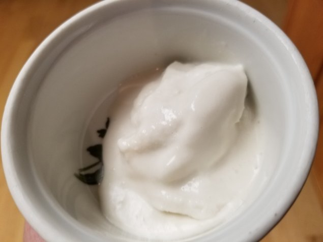 Keto Soft Serve Coconut Milk Vanilla Ice Cream