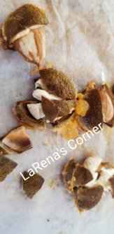 Apricot kernels from Apricot Pits